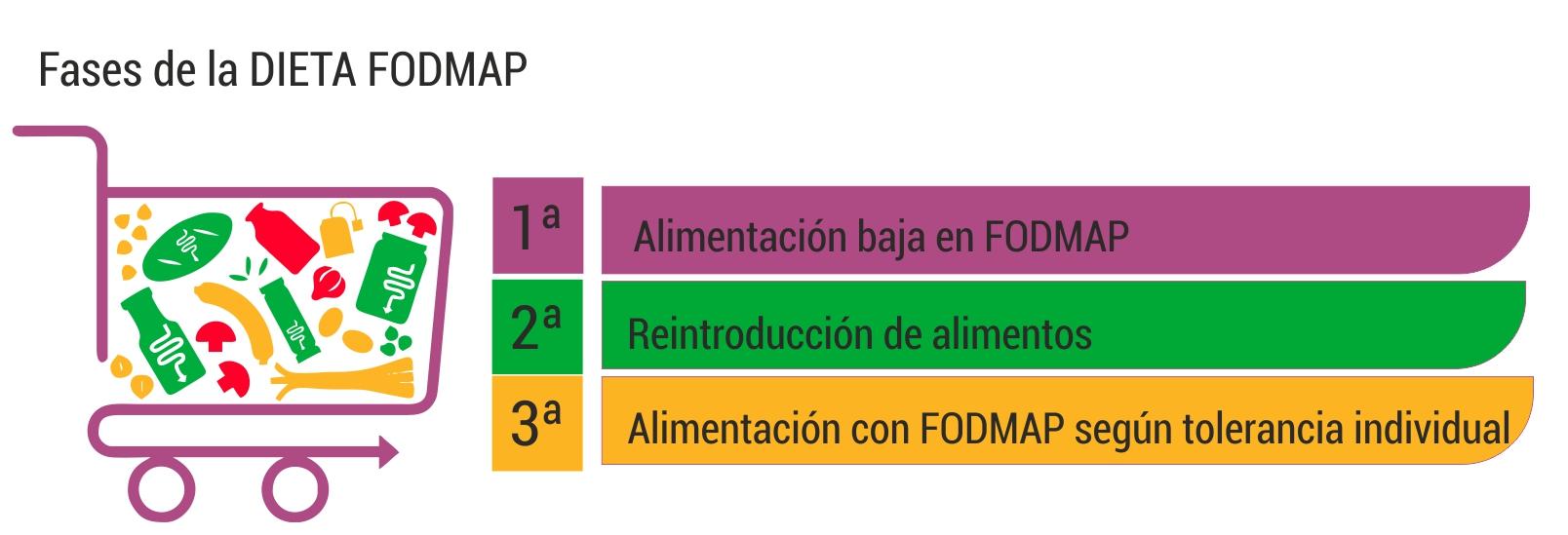 Resultado de imagen de fases fodmaps