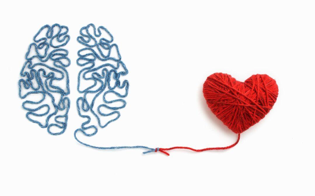la conexión entre el cerebro y el corazón